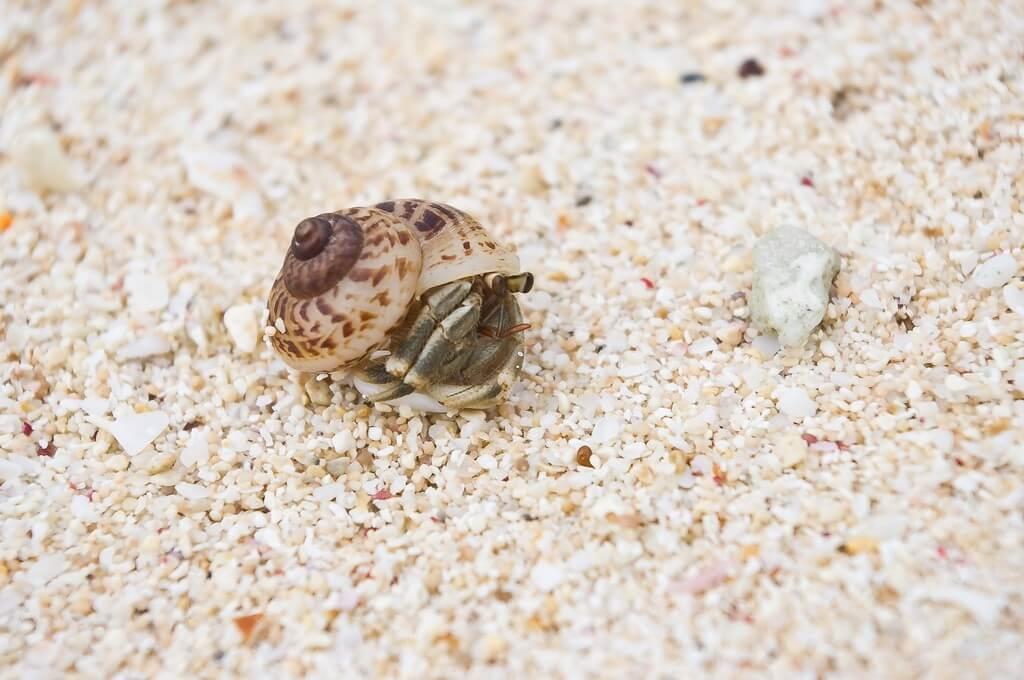 沖繩離島|宮古島x住海邊的海島生活