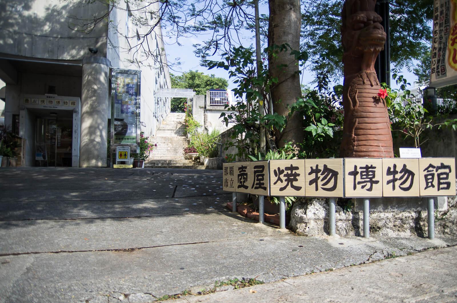 沖縄の図鑑書籍&図鑑サイトおすすめ12選!