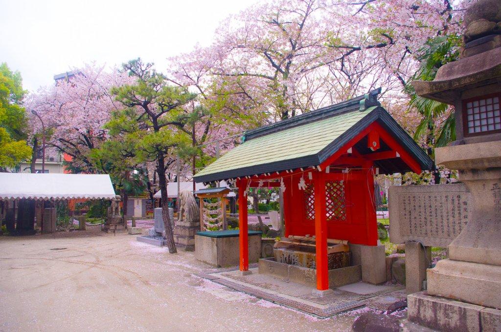 日本生活|各項簽證及在留資格介紹