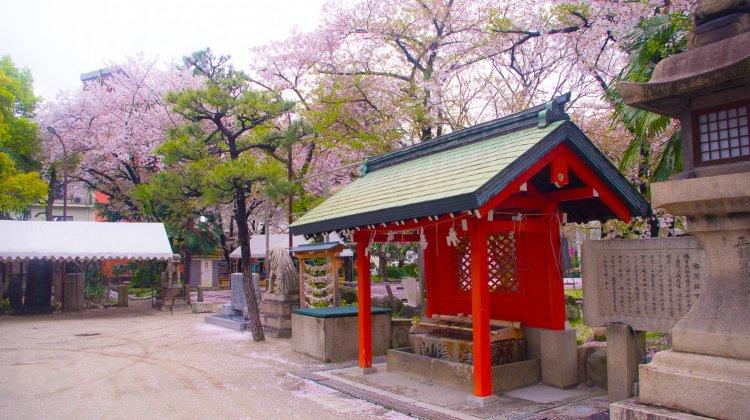 【日本生活】各項簽證及在留資格介紹