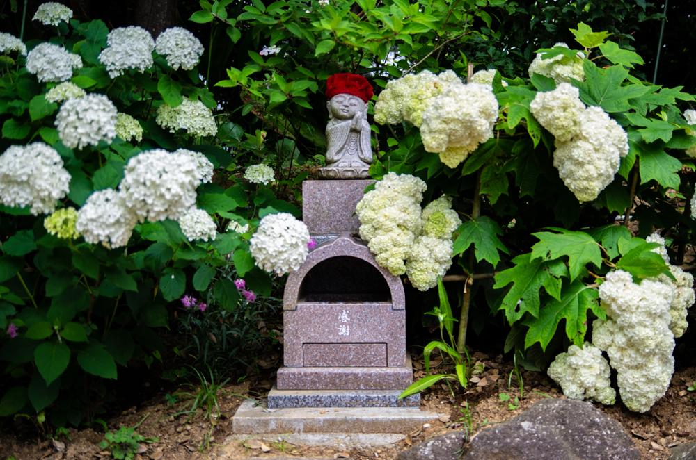 二本松寺繡球花之杜佛像