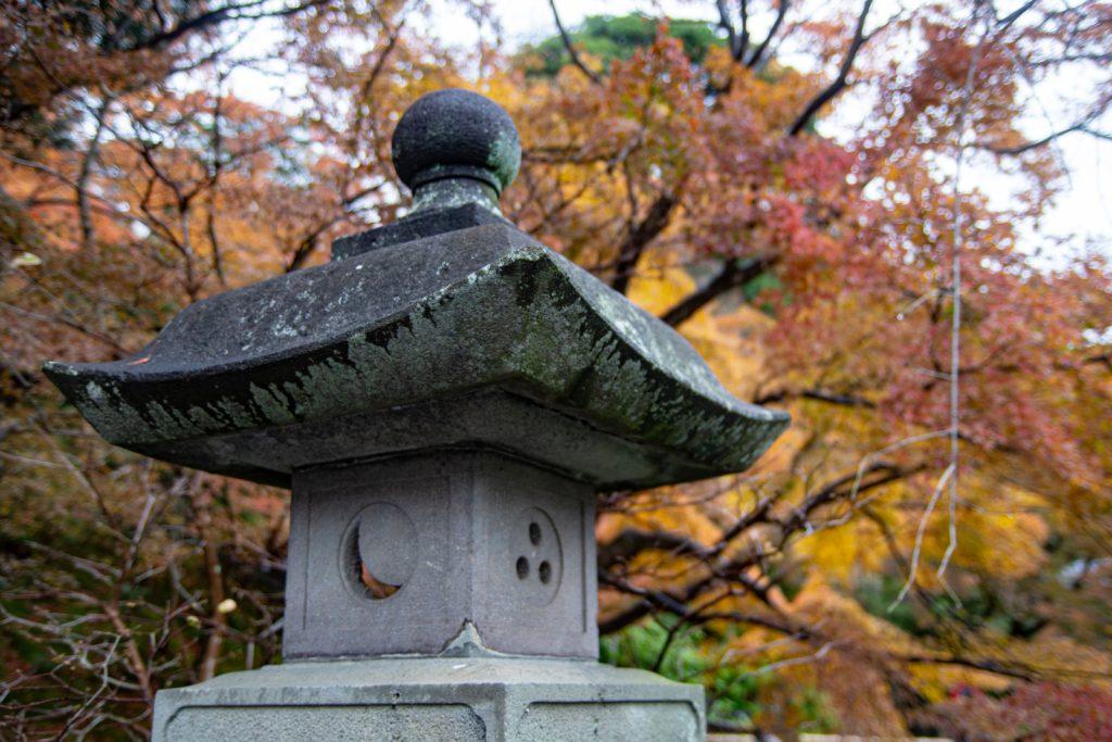 長谷寺楓葉