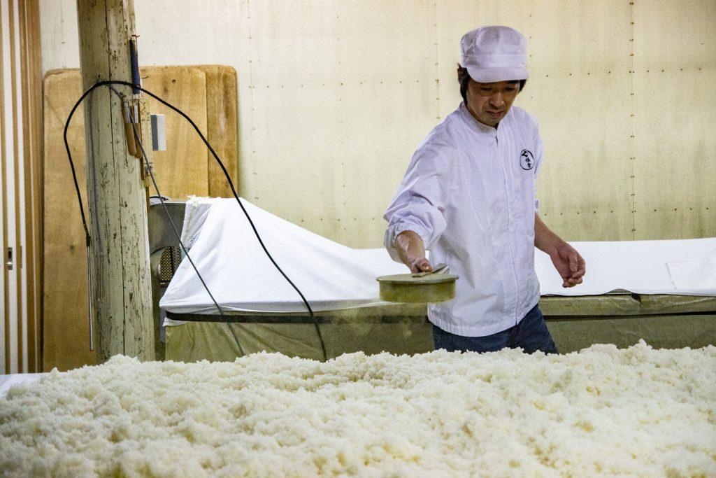 日本酒製法撒上酵母