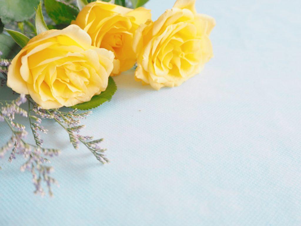 日本父親節送黃色玫瑰